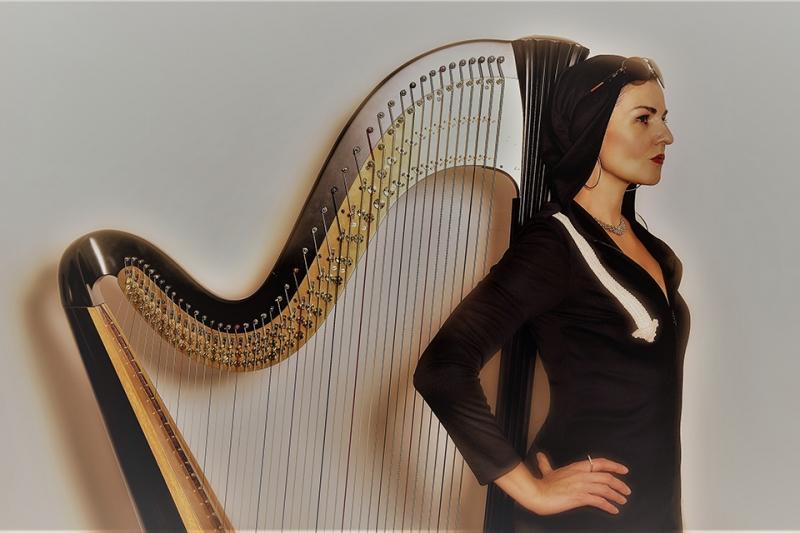 Alina Bzhezhinska HipHarp Quintet - MMXX Photo 1
